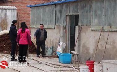 """泗阳17头水牛集体""""出走"""",民警雨夜苦寻失主"""