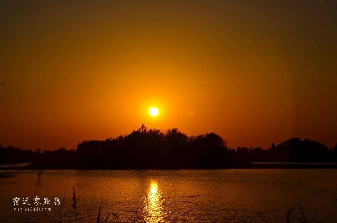宿遷洪澤湖濕地落日余暉,晚霞醉人,只余一個安靜的背影!